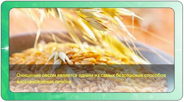 Овес для очищения печени рецепты с фото простые и вкусные
