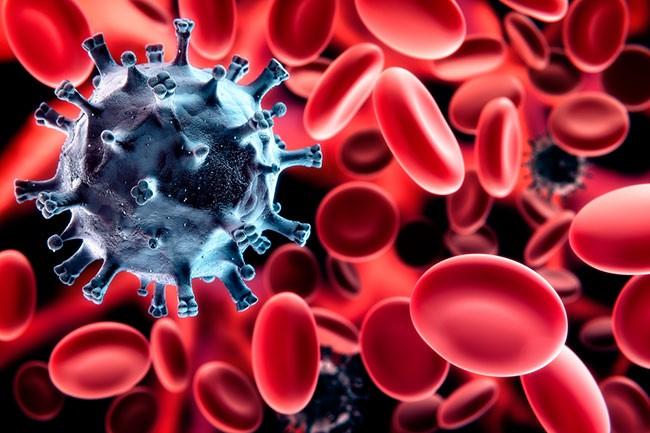 Очищение кровеносной системы от токсинов
