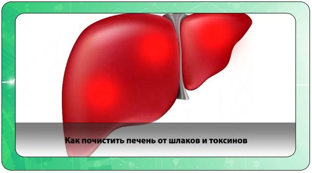 Шлаки и токсины в печени
