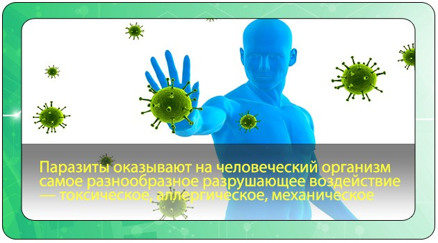 Воздействие паразитов на организм