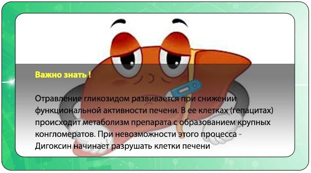 Интоксикация клеток печени