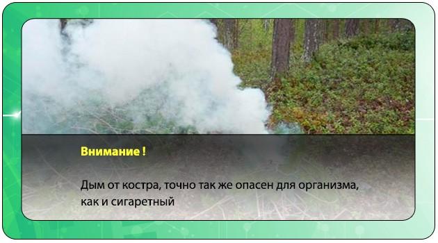 Дым от костра