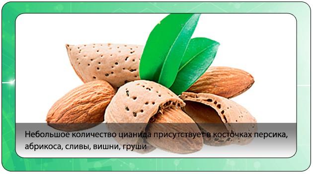 Косточковые плоды