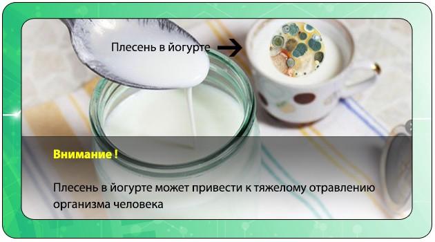 Кисломолочный продукт с плесенью