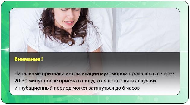 Инкубационный период интоксикации мухомором