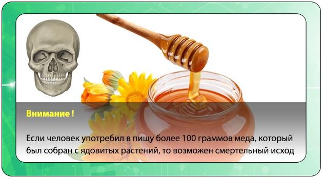 Смерть после интоксикации медом