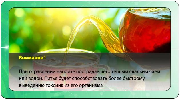 Теплое питье при отравлении