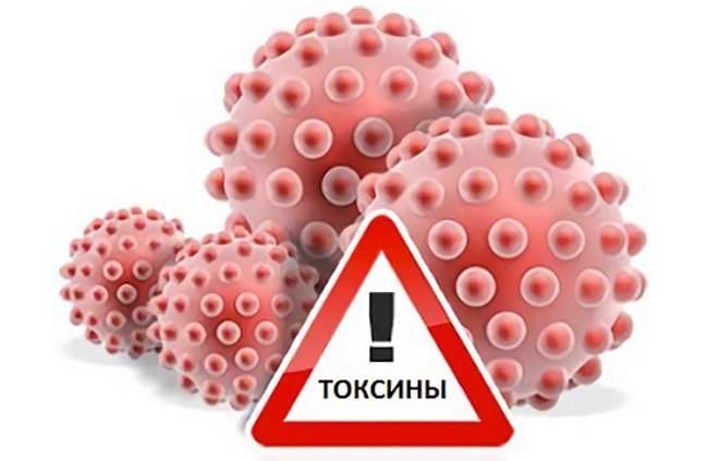 Токсическое отравление