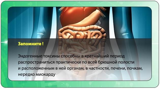Токсины в брюшной полости