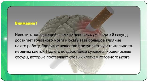 Влияние никотина на головной мозг