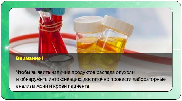 Лабораторные анализы мочи и крови