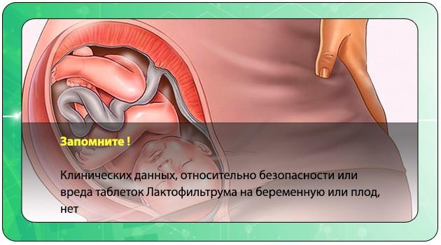 Плод в утробе матери