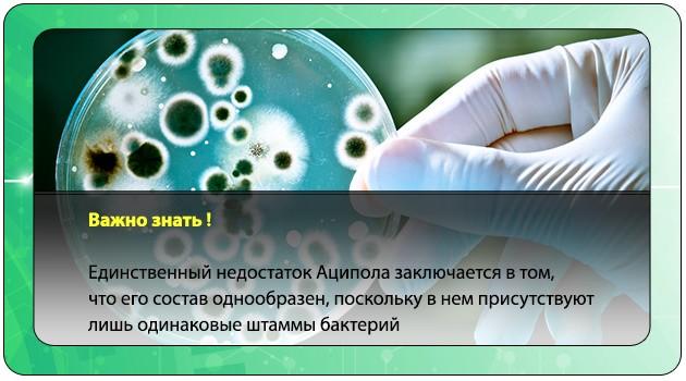 Штаммы бактерий