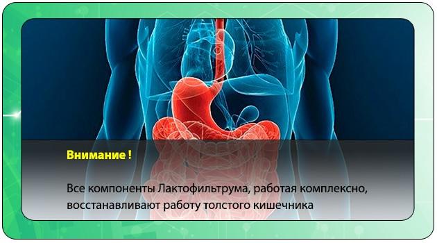 Улучшение работы толстого кишечника