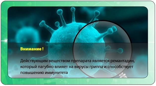 Вирусы гриппа
