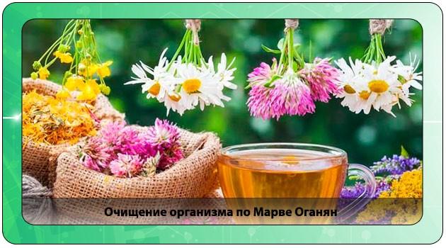 Методика очищения по Марве Оганян