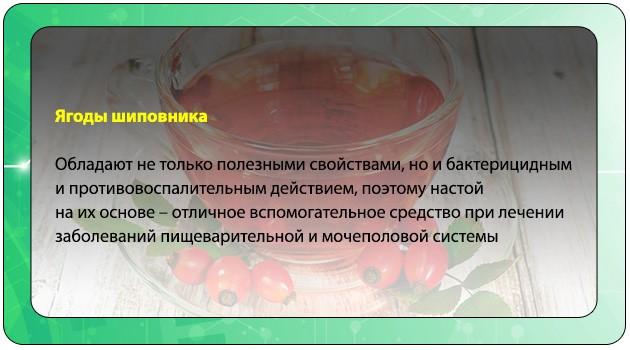 Настой ягод шиповника