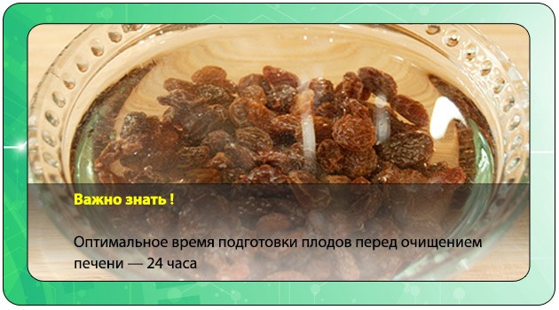 Оптимальное время приготовления плодов изюма