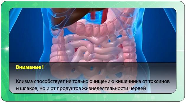 Выведение шлаков из организма