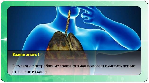 Очищение легких после курения