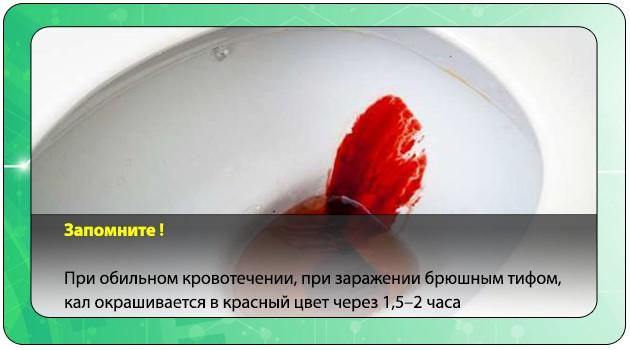 Окрашивание кала в красный цвет