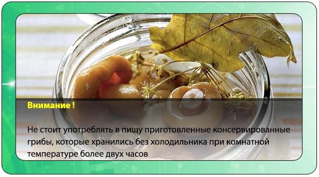 Меры предосторожности при солении грибов