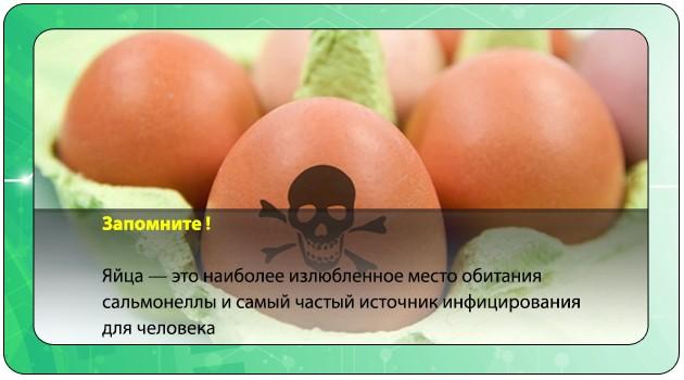 Яйца зараженные сальмонеллой