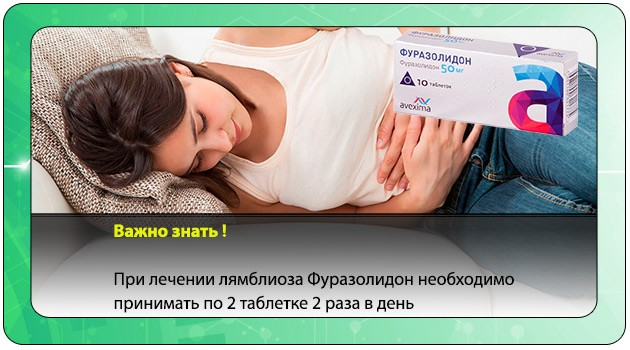 Применение Фуразолидона при лямблиозе