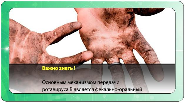 Передача ротавируса через грязные руки